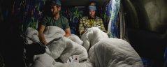 2 Seater Campervan Europe